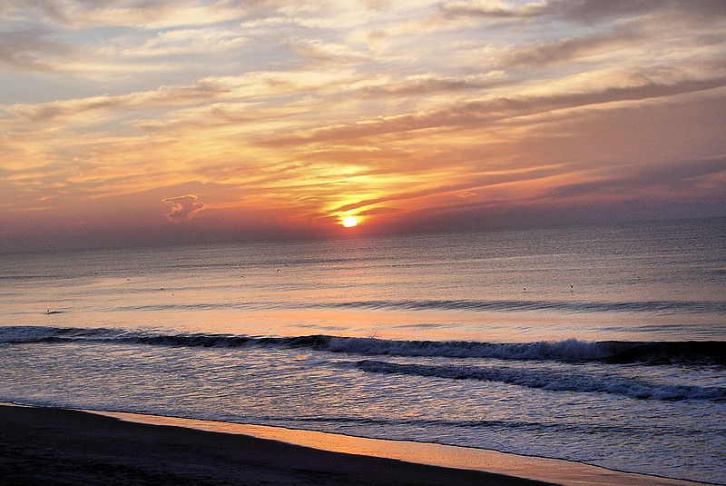 5 Amazing Things To Do On Topsail Island NC